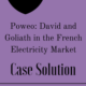 Poweo- David and Goliath in the French Electricity Market Case Solution