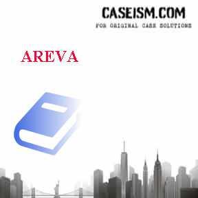 AREVA Case Solution