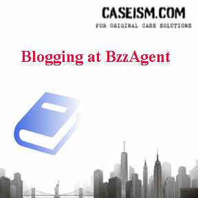 blogging at bzzagent case study
