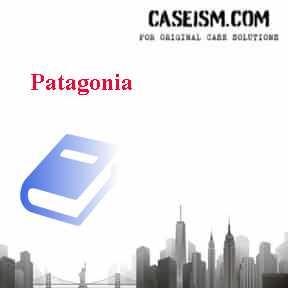 patagonia case solution