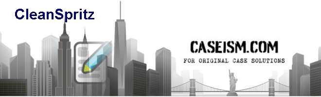 CleanSpritz Case Solution
